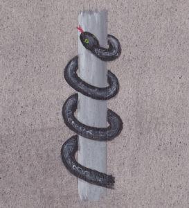 Kraftbillder Schlange Wasser