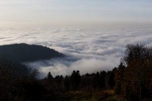 Nebel Meer Verstrickungen