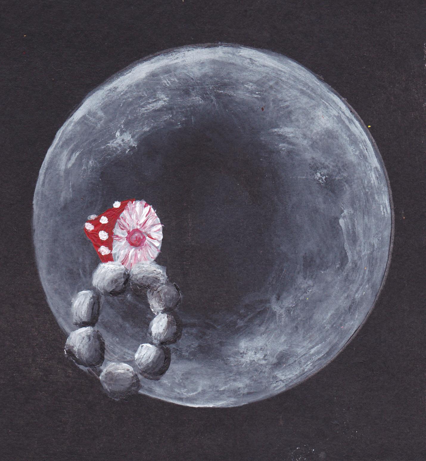 Mond Stein Pilz