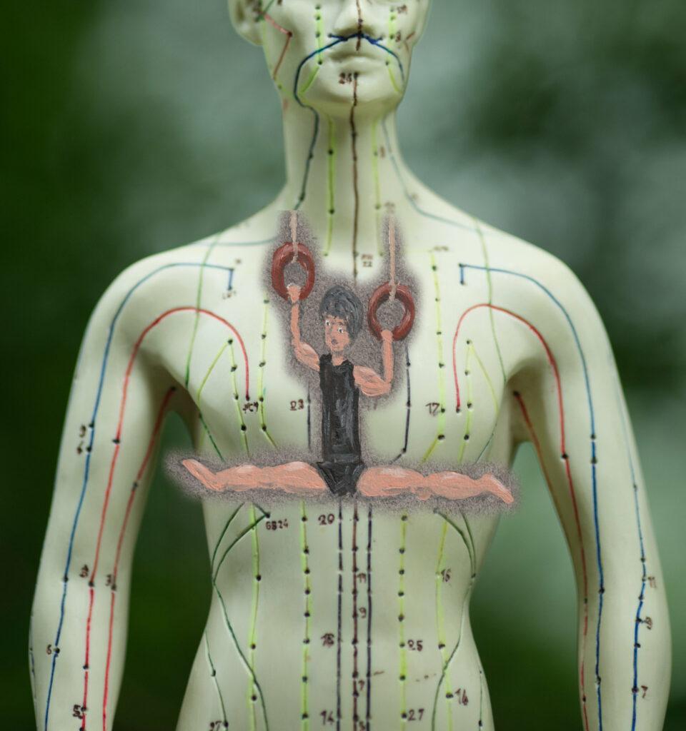 Muskelkraft Body