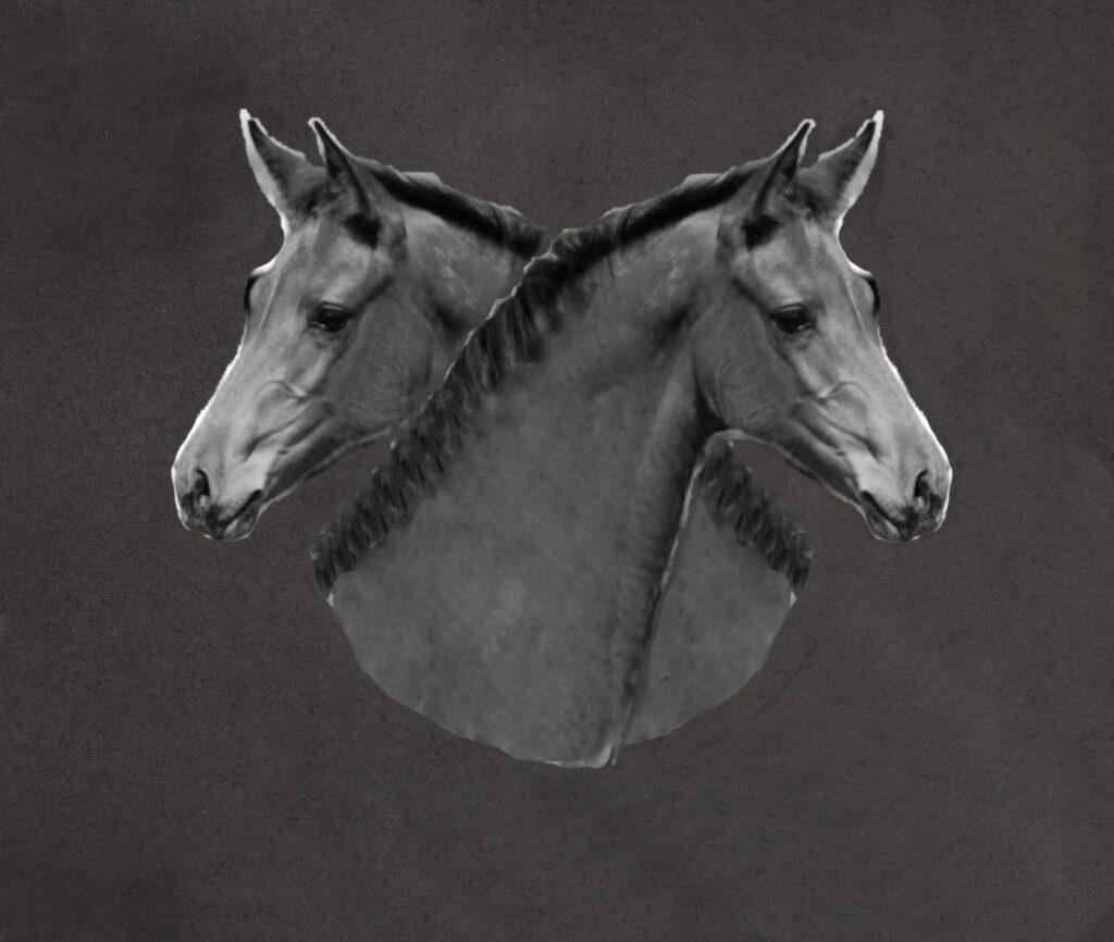 Pferde twisted